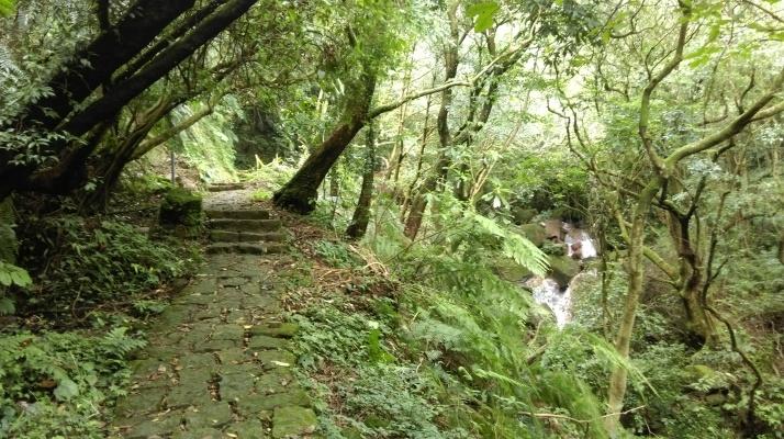 trail to Juansi Waterfall