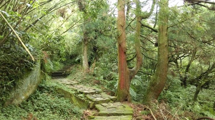 trail towards Qingtiangang