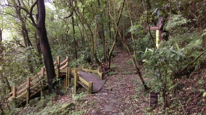 junction with a closed off trail