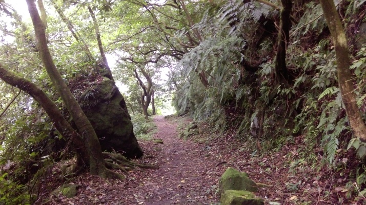 trail to the car park
