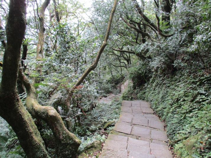 trail leaving Qixing Park