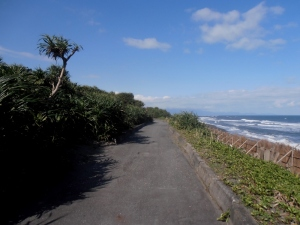 bike trail along the coast