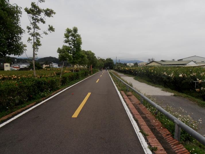 biking past fruit orchards