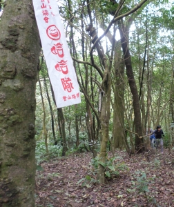 hiking flags attached to trees are helpful in following the trails