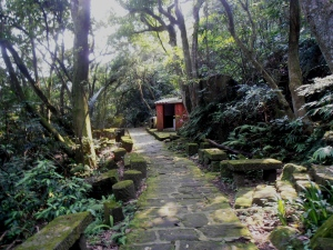 trail going past a small shrine