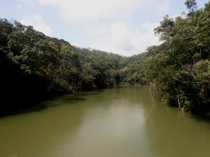 Pitou Lake