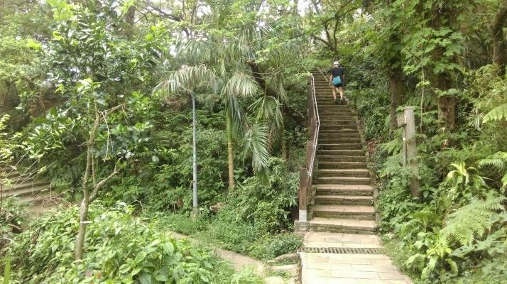 go straight climbing to the peak