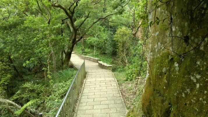towards Elephant Mt.