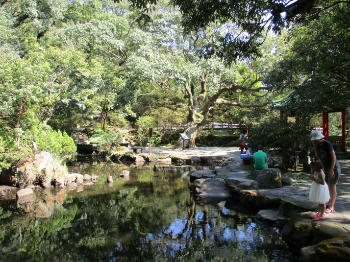 pond in Yangming Park