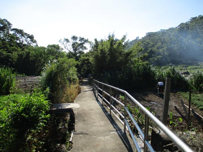 trail passing a small farm