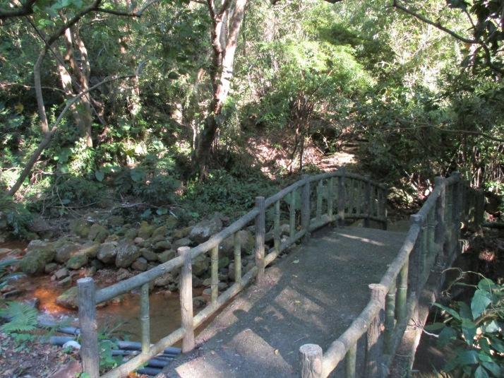 start of the trail along the sream