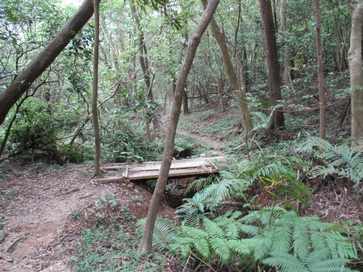 trail going down to Beitou