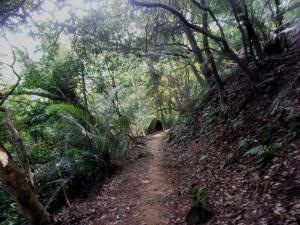 Liouliao Trail