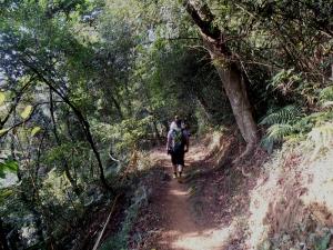 Tengping Trail