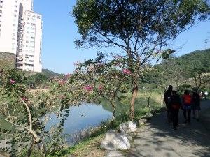 walking along Golden Dragon Lake