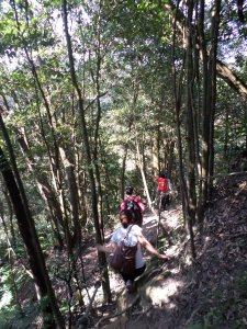 short climbs