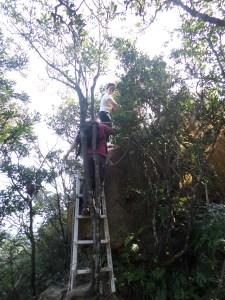 climb the short ladder