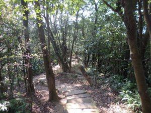 trail to Laojiujian Mountain