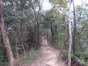 trail descending Mt. Kangle towards Rubbing Station