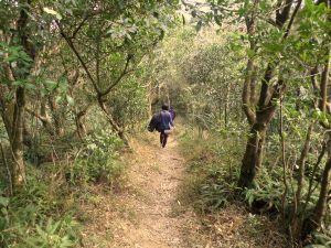 a nice easy trail