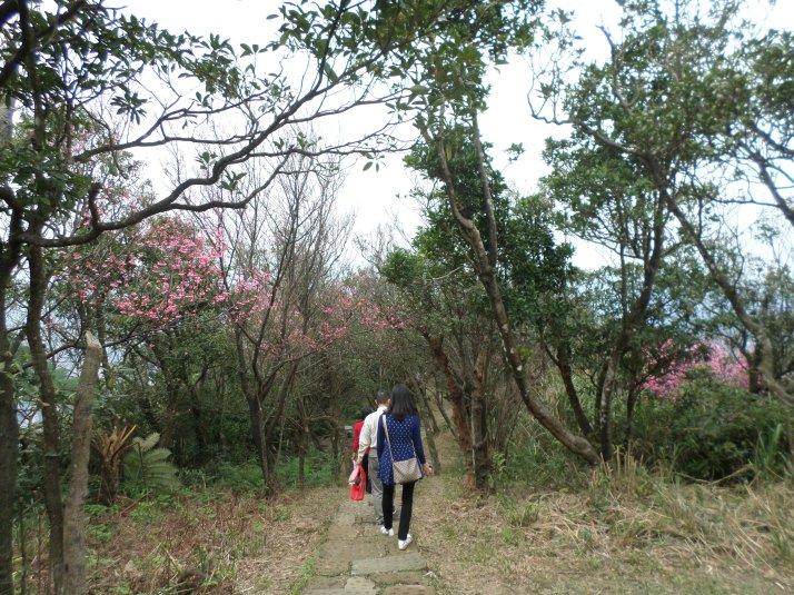 near Dajianshan peak