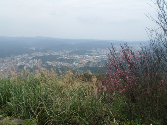 view from Dajianshan peak