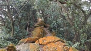 rocky trail along the ridge
