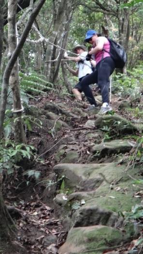 descending Zhongyang