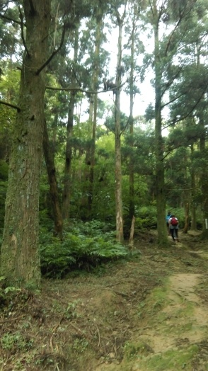 Dongshige Trail to the farm