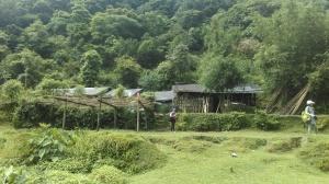 an isolated farmhouse
