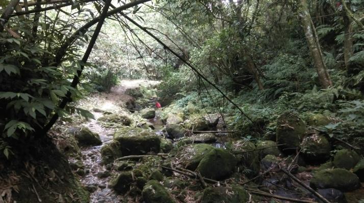 Dongshige Trail to Pingxi