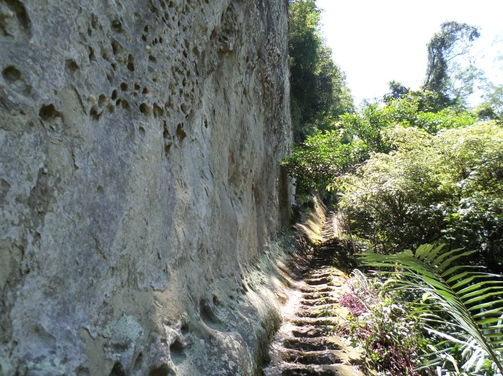 trail going the base of a cliff