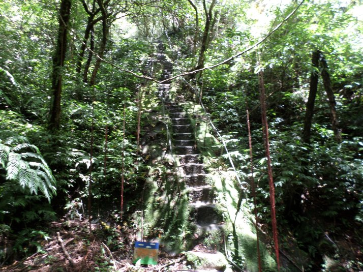 to the top of Mt Xiaoxi