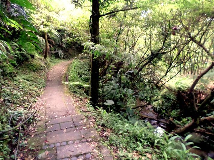 following a stream back to Pingxi