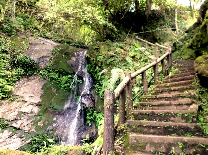 stairs going down past a small waterfall