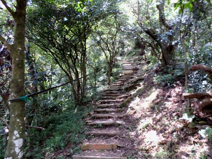 climbing up Wucheng