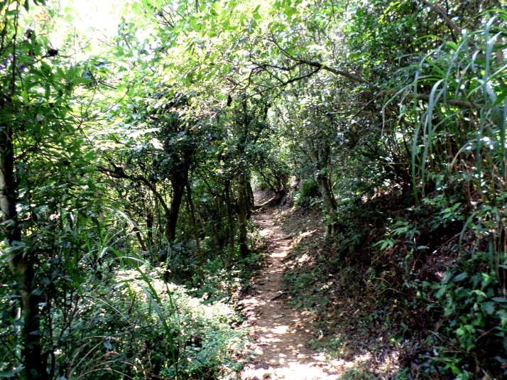 dirt trail to Wucheng
