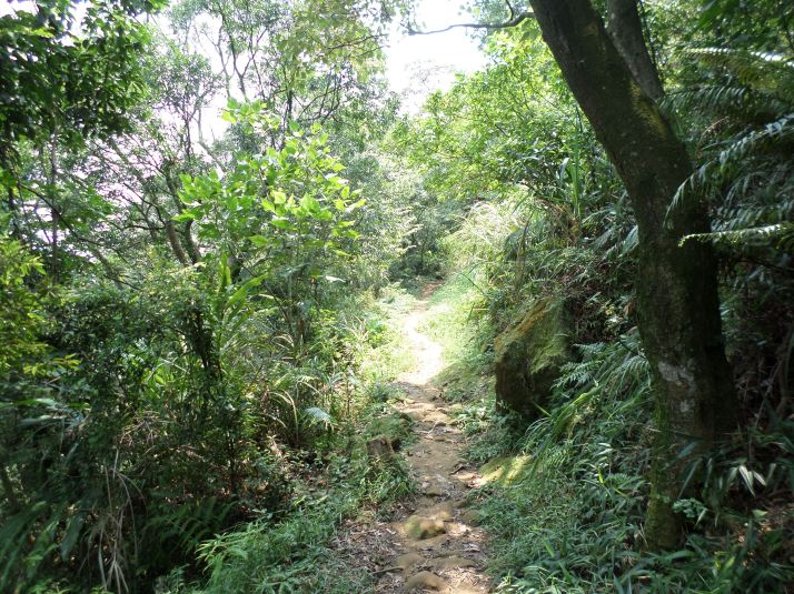 leading away from Mt. Wucheng