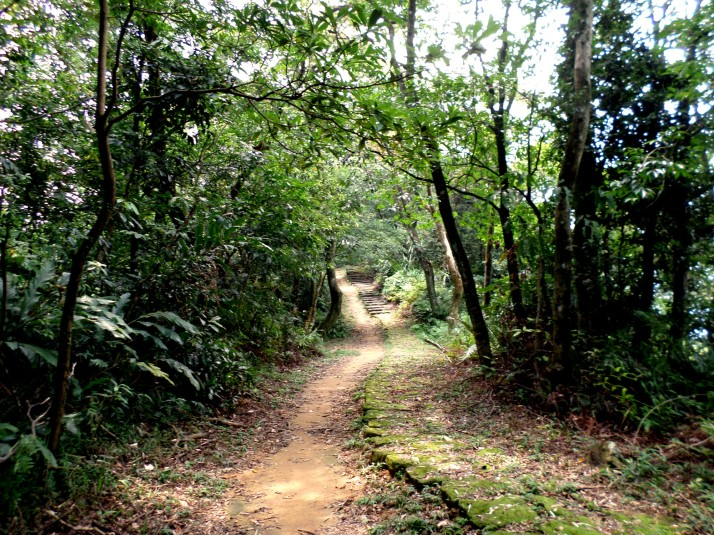 dirt track following the old stone trail