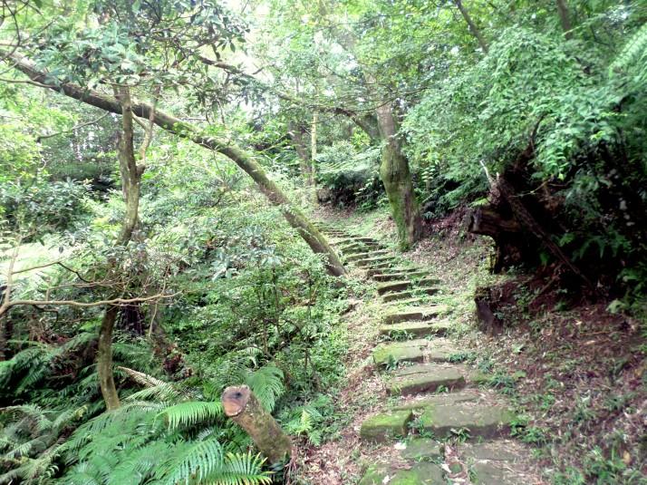 trail to Tiannshang