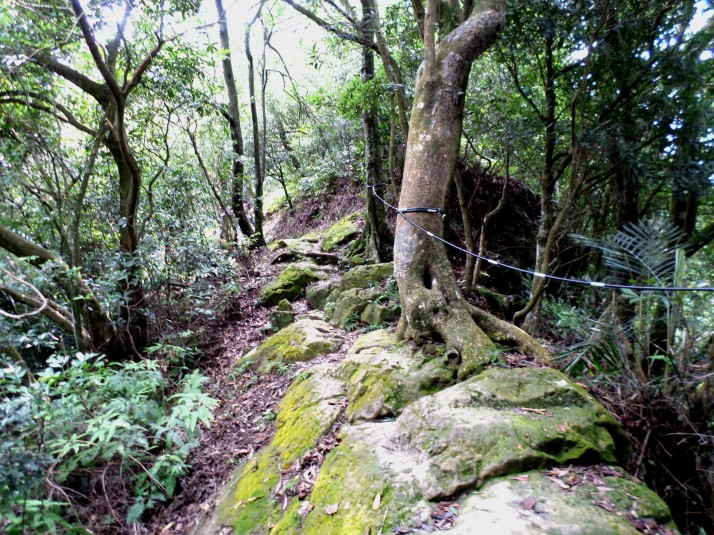 rocky section of trail
