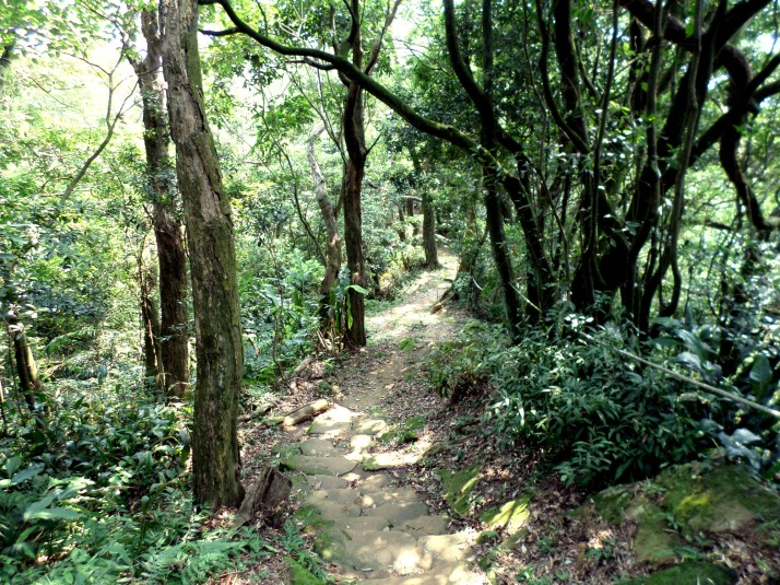 trail leading away from Tianshang