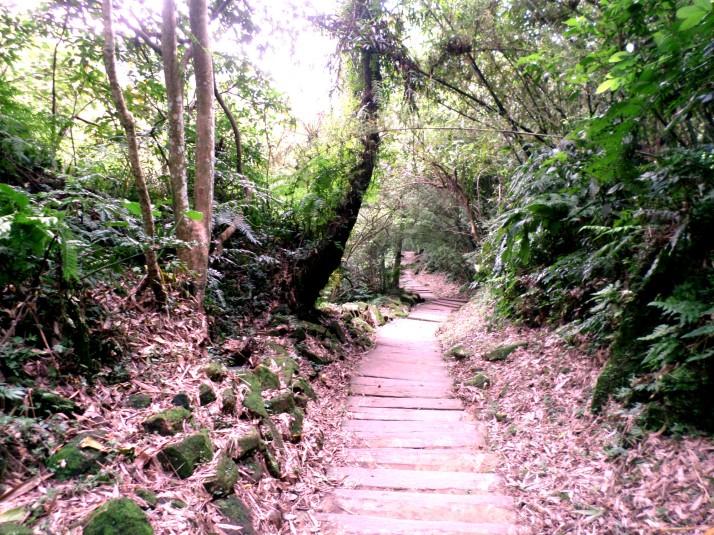 Tunghwa Park trail towards Chengtian Temple