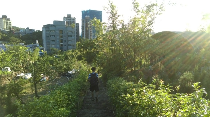 passing garden plots