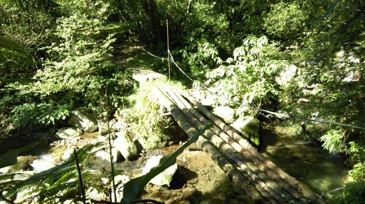 log bridge