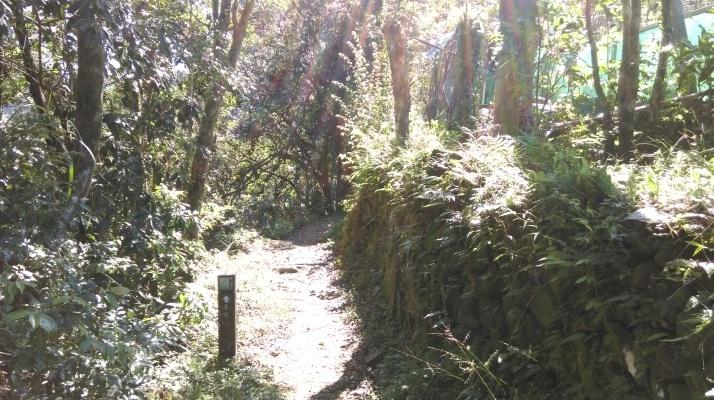 trail going behind a farmhouse