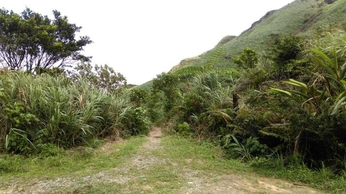 trail starts here