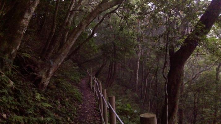 flat trail along the hillside again