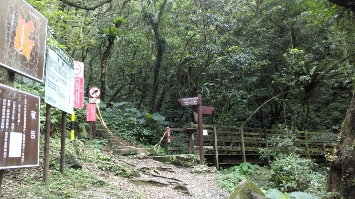 trail junction and wooded bridge, turn right here to return on the self guiding trail